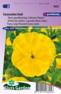 Pansy Swiss Giants, Coronation Gold