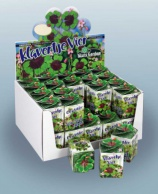 Greengift, Lucky four leaf clover 40 pcs in showbox