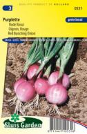 Red Bunching Onion Purplette