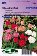 Geranium, Garden or Bedding F2 Colour Show Mix