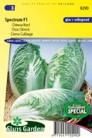 Chinese cabbage Spectrum F1