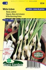 Onion Bunching White Lisbon (seed tape)