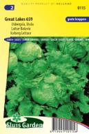 Lettuce iceberg Great Lakes 659