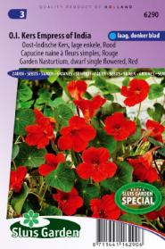 Nasturtium, Indian Cress dwarf single Empress of India red