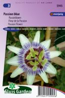 Passion Flower Passion Blue