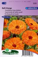 Calendula (Pot Marigold) Ball's Orange tall double