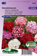 Sweet William Single Choice Mix