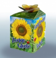 Greengift Sunflower