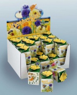 Greengift, Bee Flowers 40 pcs in showbox