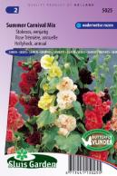 Hollyhock Annual  Double Choice Mix