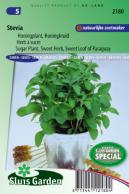 Stevia, Sugar Plant, Sweet Herb, Sweet leaf of Paraguay
